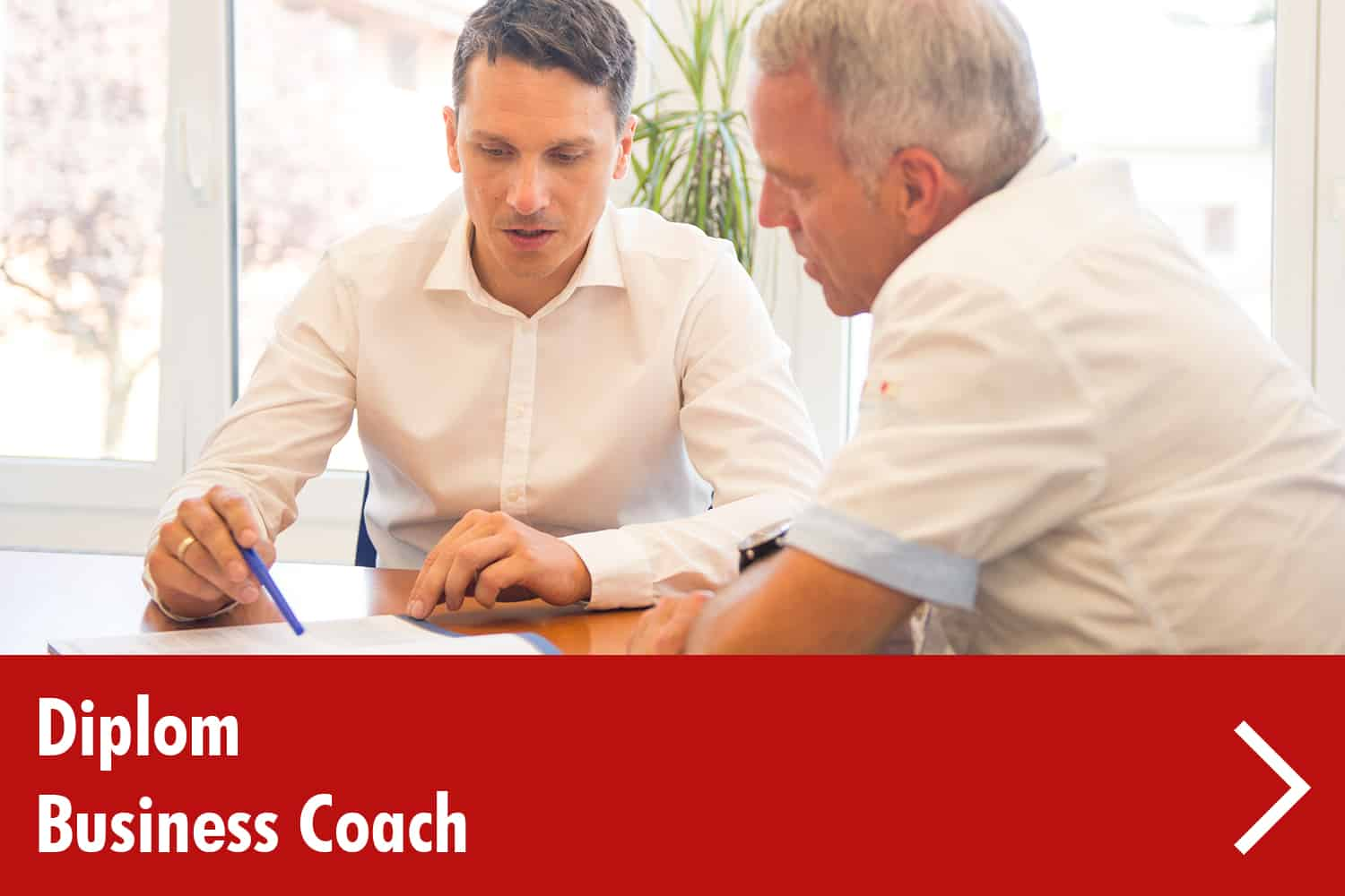diplom-business-coach