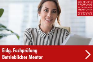 eidg-fachprüfung-betrieblicher-mentor-menü-1
